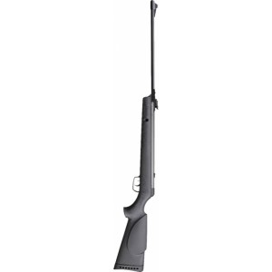 GAMO BIG CAT 1000 E
